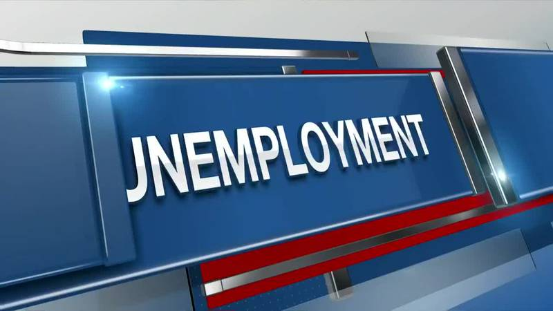 VIDEO: Some SC workers can face longer unemployment wait times