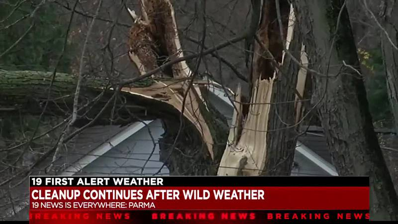 Sunday night's intense wind, rain, and hail left damage across Northeast Ohio