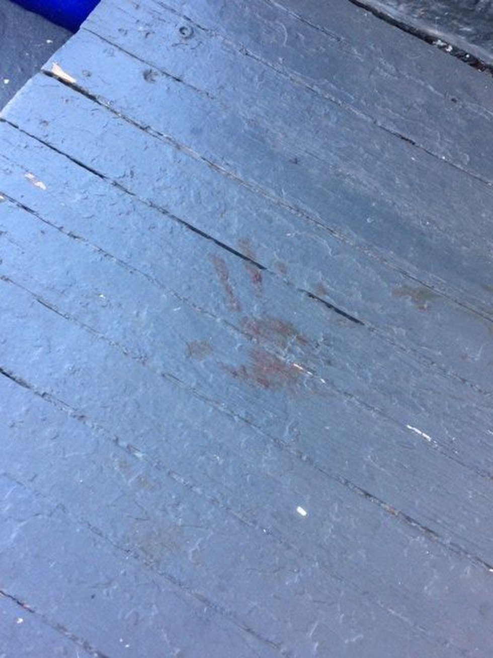 Bloody handprint on front porch after dog attack. (Source: WOIO)