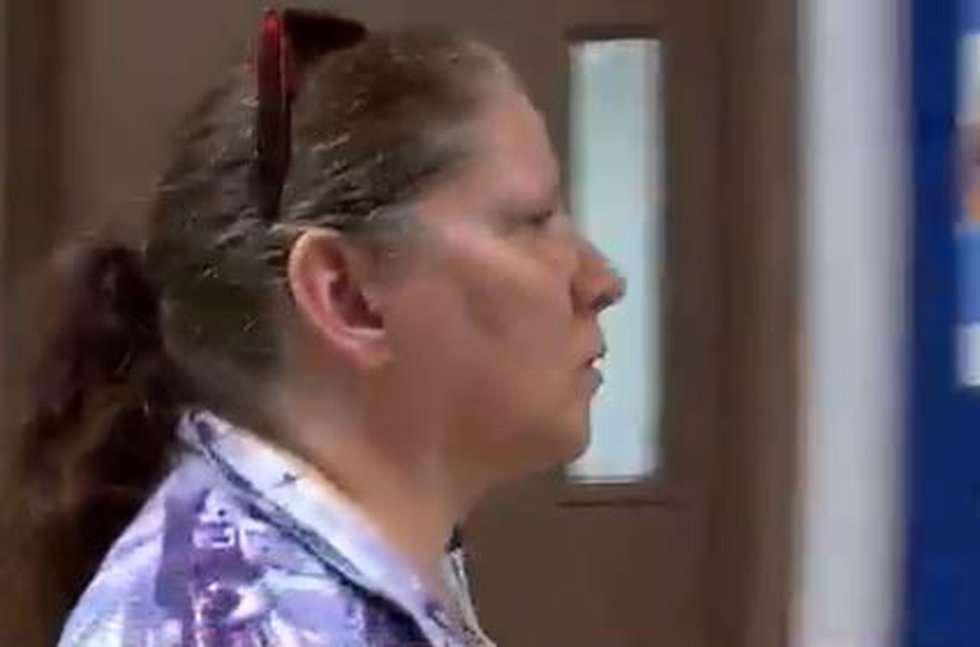 A pet owner whose dogs attacked several people appeared in court today.