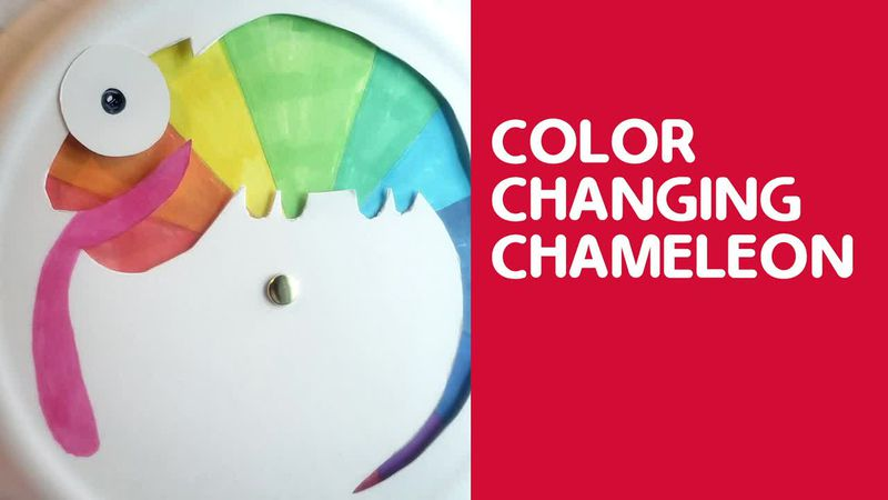 Family craft idea:  How to make a color changing chameleon