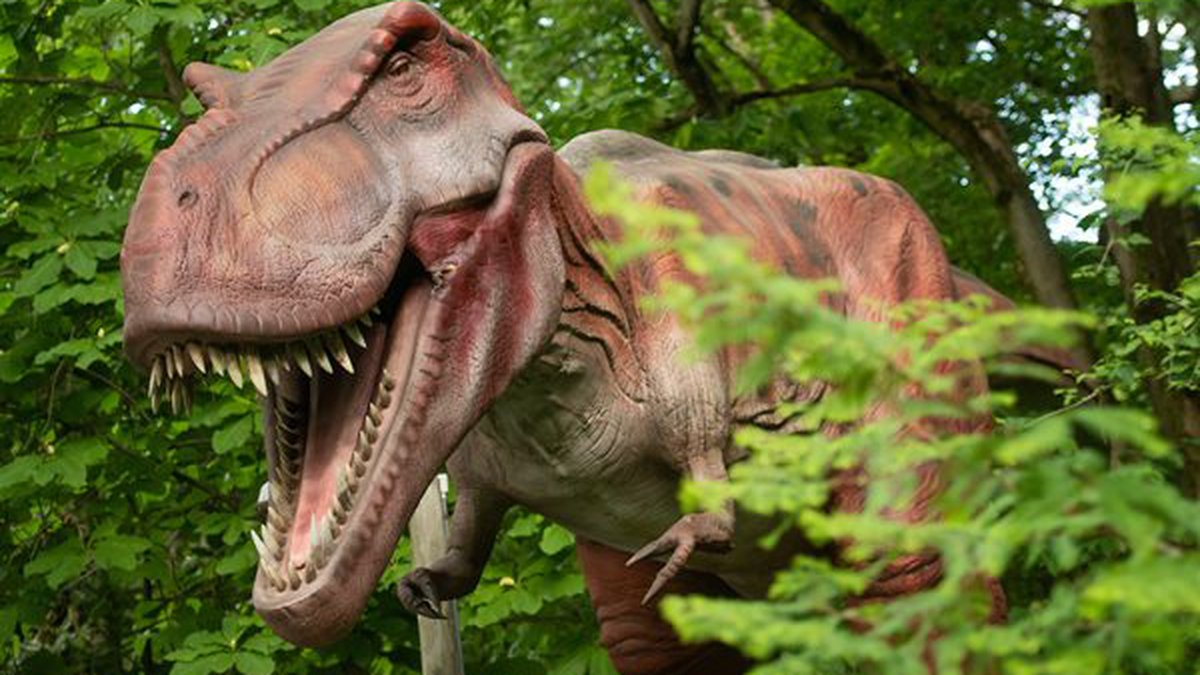 Dinosaurs Around the World coming to the Cleveland Metroparks Zoo