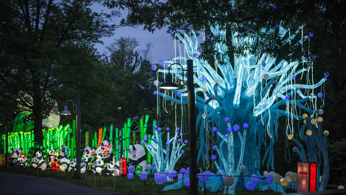 Asian Lantern Festival preview at The Cleveland Metroparks Zoo on June 17, 2019.  (Kyle...