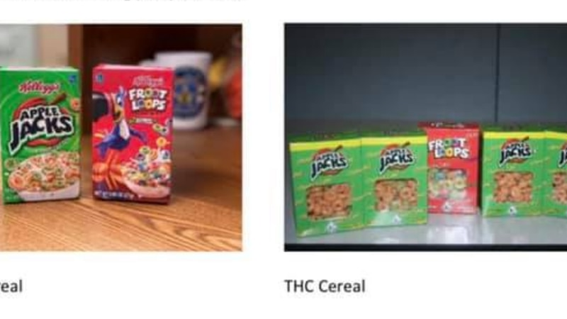 THC cereal, mushrooms, ecstasy, Percocet seized in Colebrook Township