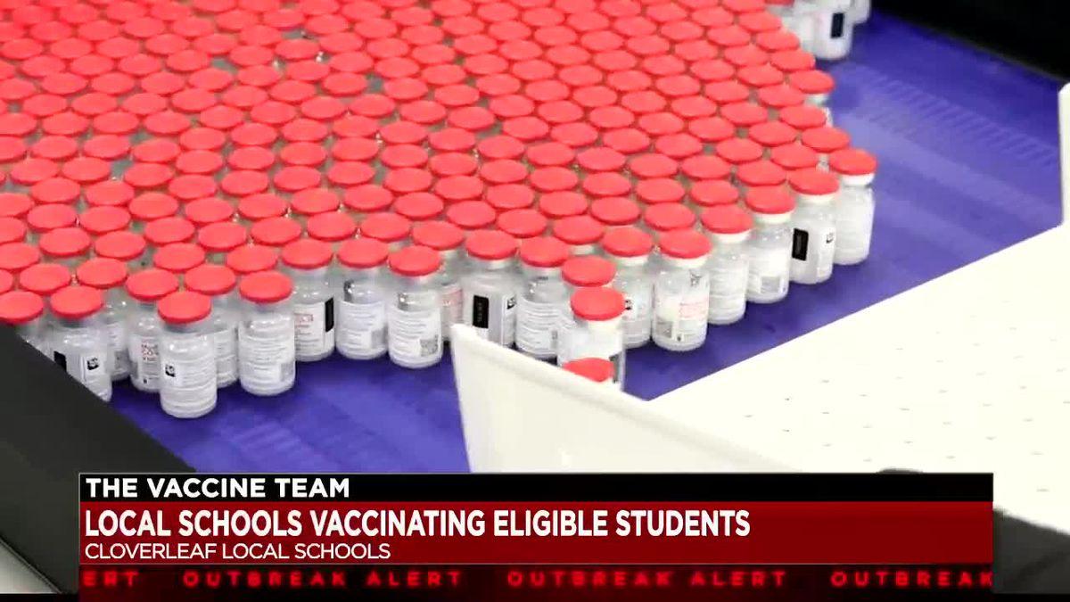 The Vaccine Team