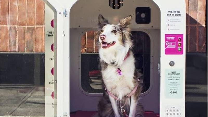 The dog houses will come to Cuyahoga Falls in August.