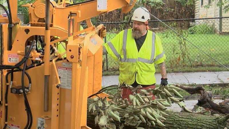 A city worker loads a fallen tree into a wood chipper Monday, June 12, 2021, in Cleveland's...