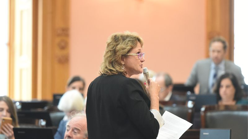 State Rep. Gail Pavliga gives speech on the House Floor
