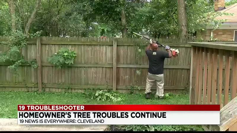 Three weeks after a line of neighboring trees were trimmed, a homeowner is demanding a property...