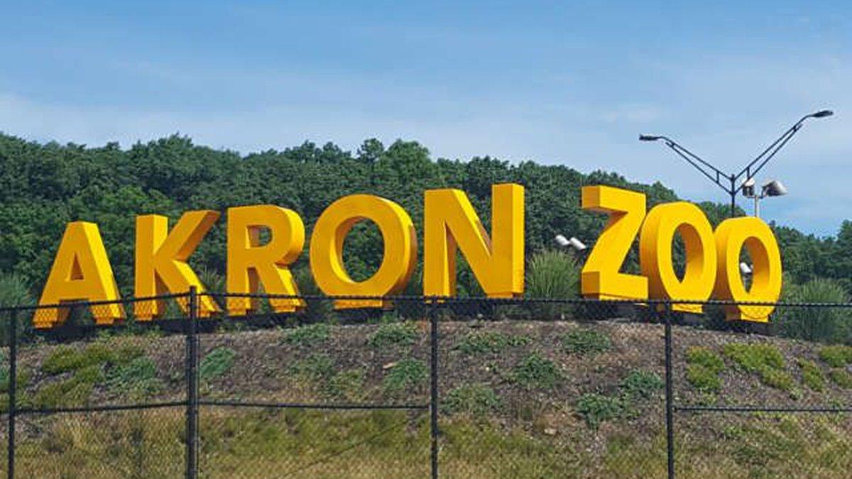 Akron Zoo (Source: WOIO)