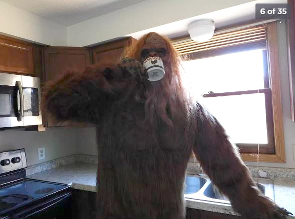 Bigfoot, or Sasquatch, is a myth about a large, upright-walking ape like creature that lives in...