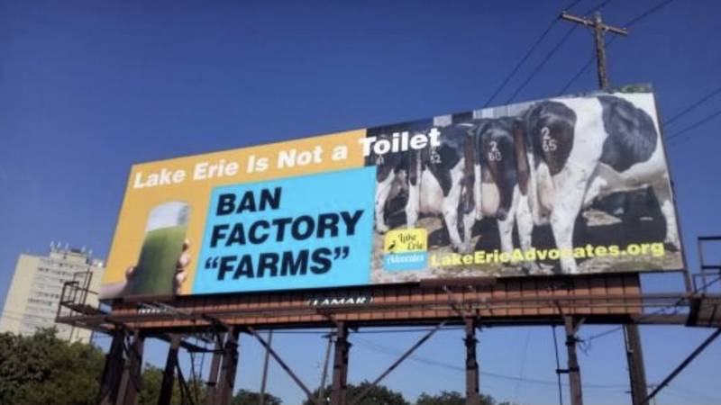 According to one expert, Lake Erie is being used as a toilet. They say tons of animal waste is...