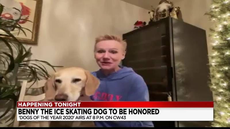 19 First Alert Science School: Benny the ice skating dog to be honored