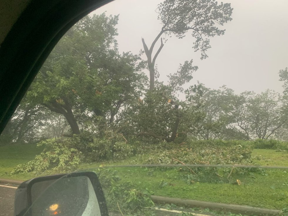 Aug. 11, 2021 storm damage: Cleveland Shoreway