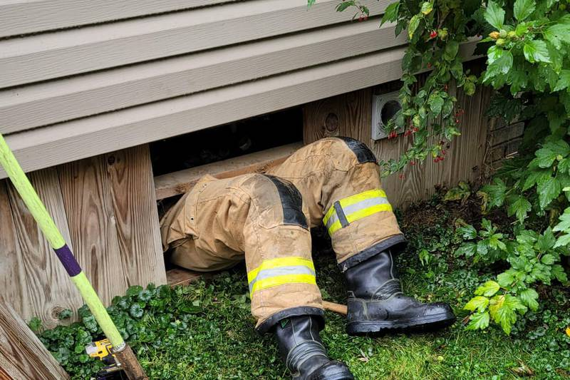 A city of Canton Fire Department cadet rescued a cat from a dryer vent Tuesday.