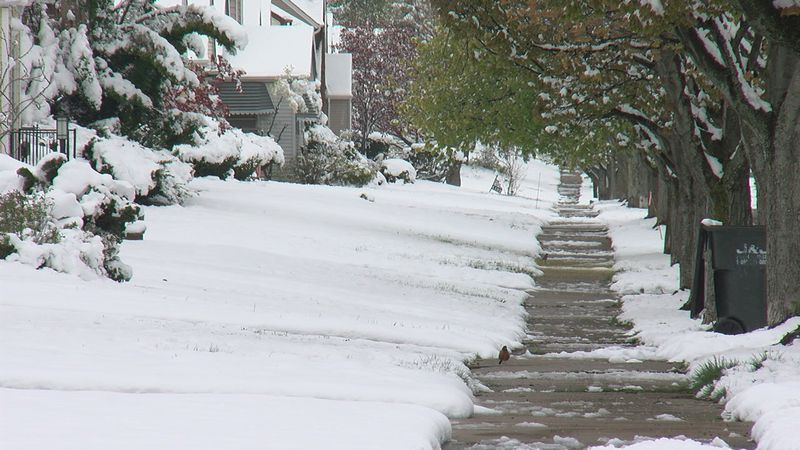 A spring snow storm knocks down trees and knocks out power on the east side of Cleveland.