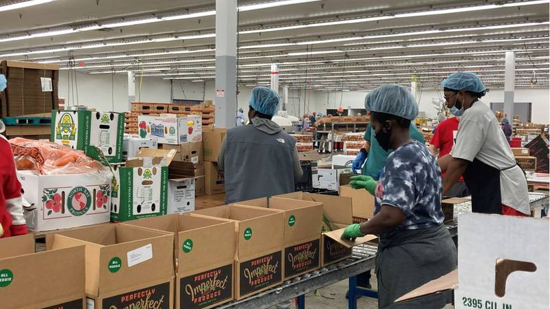 The staff at Perfectly Imperfect Produce is now prepping and packing meal kits using their...