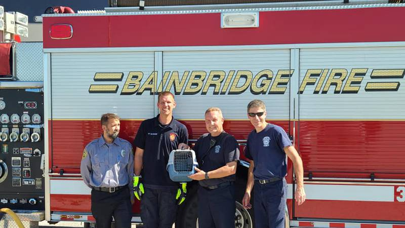 Kitten rescued by Bainbridge Township Fire Department after spending days in storm drain