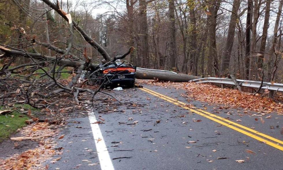 This happened on Riverside Drive in Painesville Township on Nov. 16.