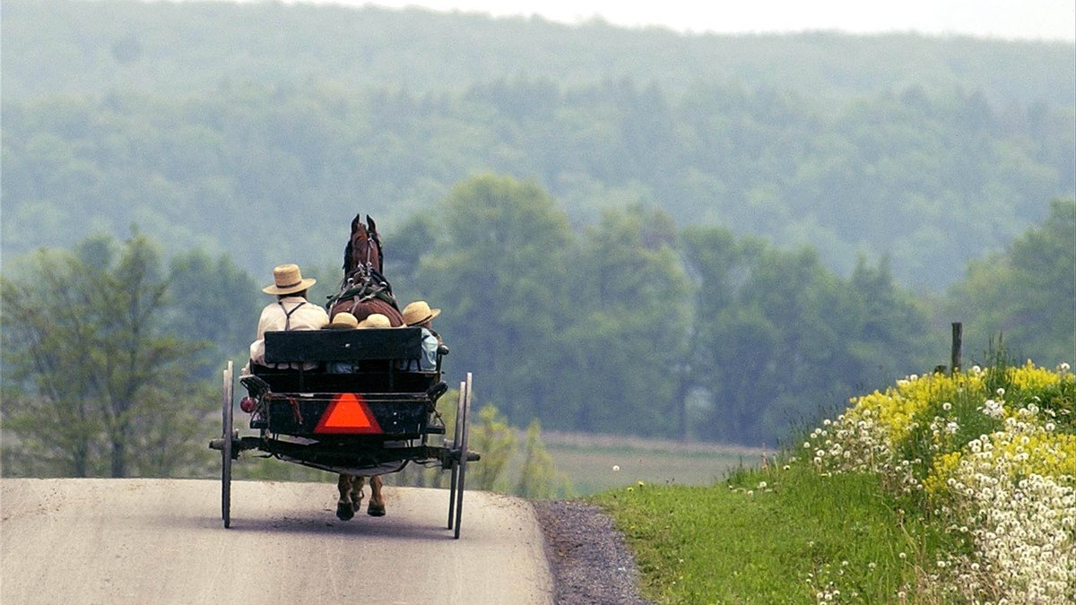 FILE: An Amish buggy with an orange triangle makes its way home after a trip to the store (AP...