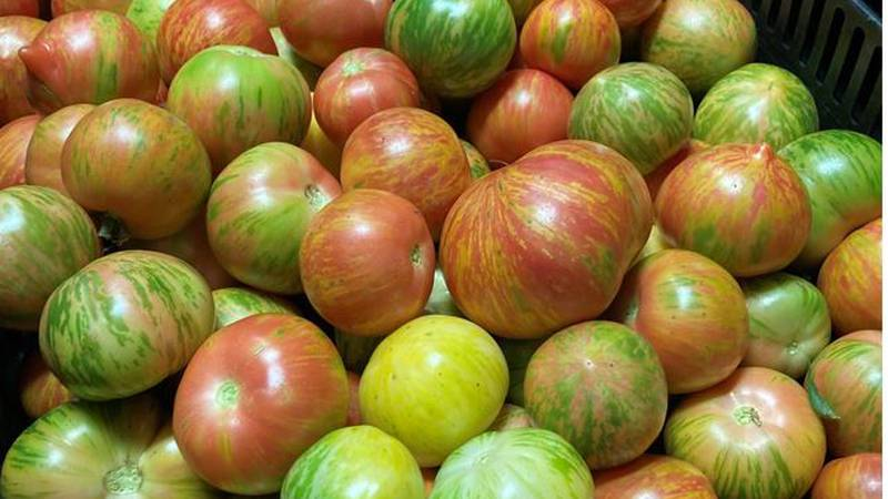 The Jones Family grows dozens of varieties of tomatoes at The Chef's Garden in Milan, Ohio.