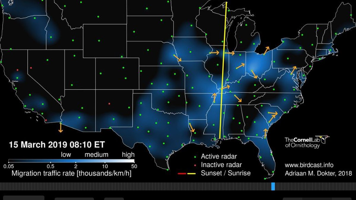 The Cornell Lab of Ornithology has a BirdCast that uses radar to track birds migrating across...