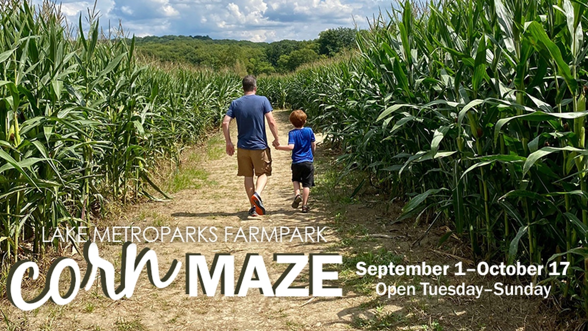 The Lake Metroparks Farmpack corn maze opens September 1, 2021.