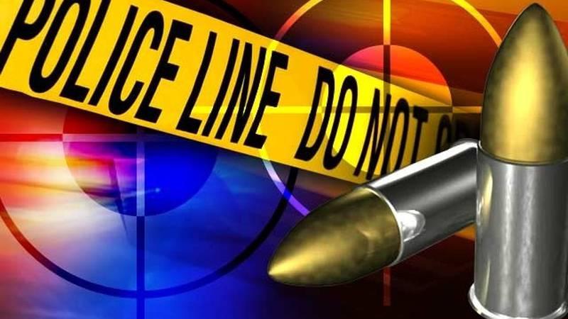 A woman was fatally shot near Boynton Beach early Saturday.