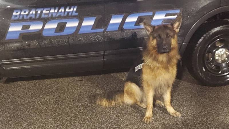 K-9 officer Cash located suspects police say shot at Parma officers before a car chase that...